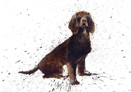 Clare Brownlow Blank Greeting Card 'Cocker Spaniel'